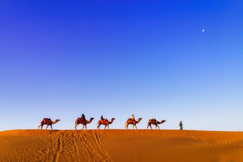 Bikaner Desert Camel Safari
