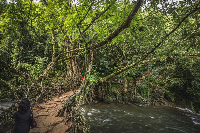 Root Bridge Mawlynnong