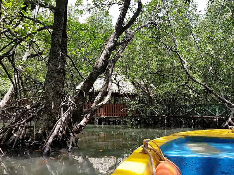 Baratang Island Andamans