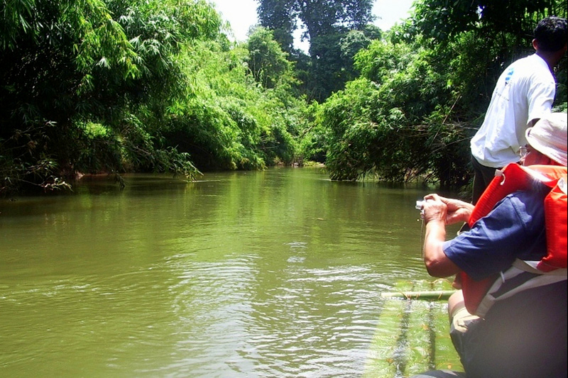 Bamoo Rafting at Pozhuthana