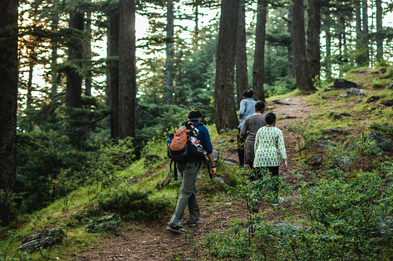 Hike- Old Manali to Solang Valley, Himachal Pradesh
