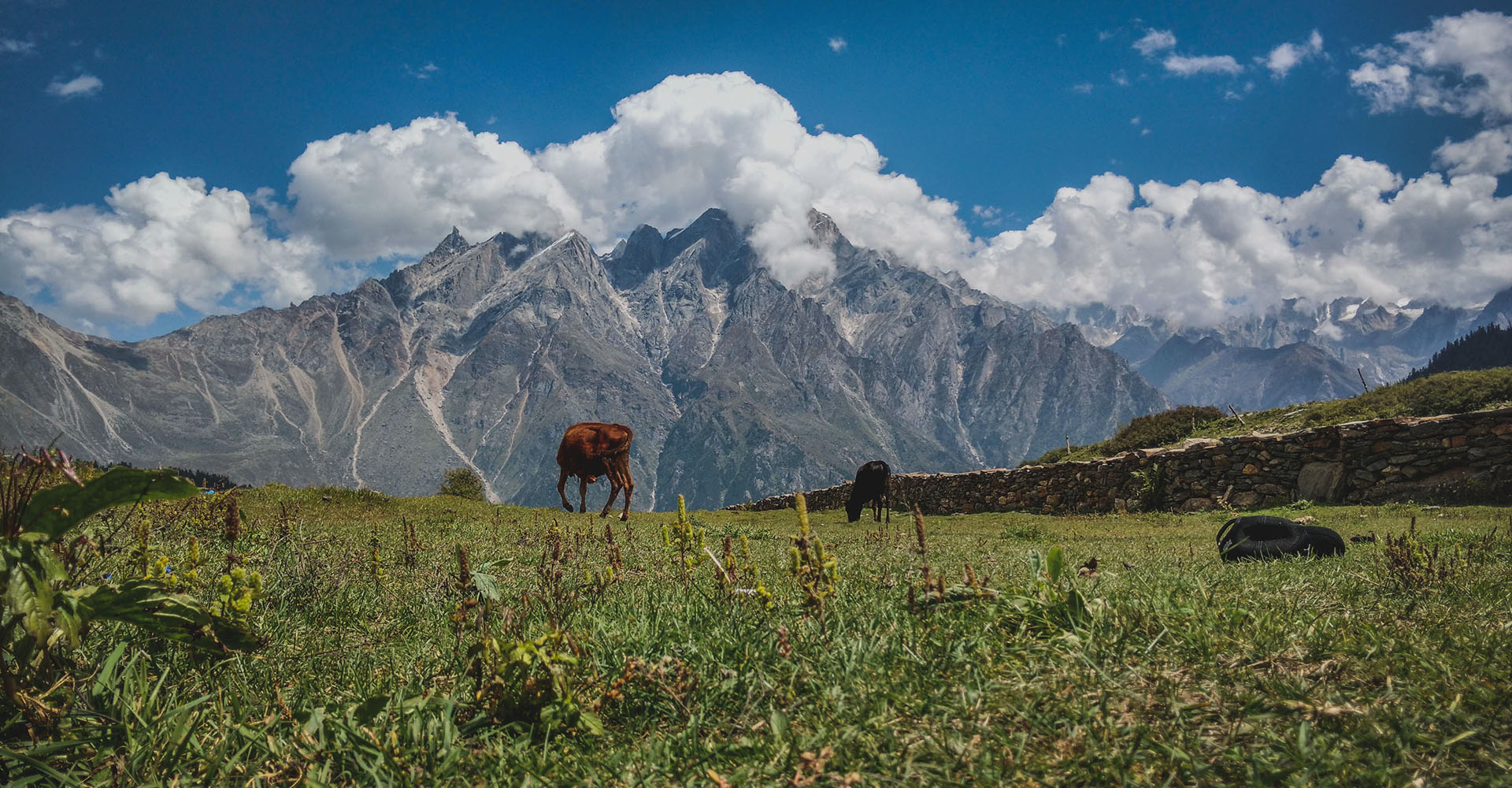 Our Top Picks in Sangla Valley