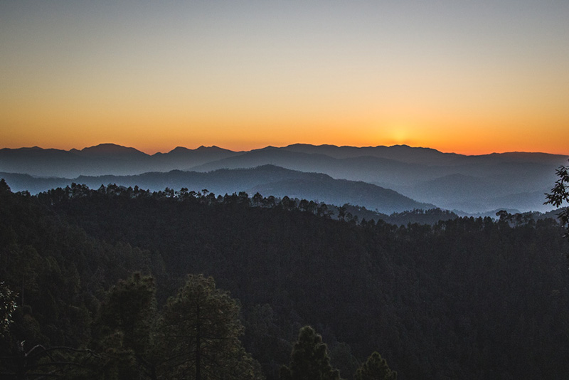 An un[traveller]'s day in Kumaon- Binsar & Mukteshwar
