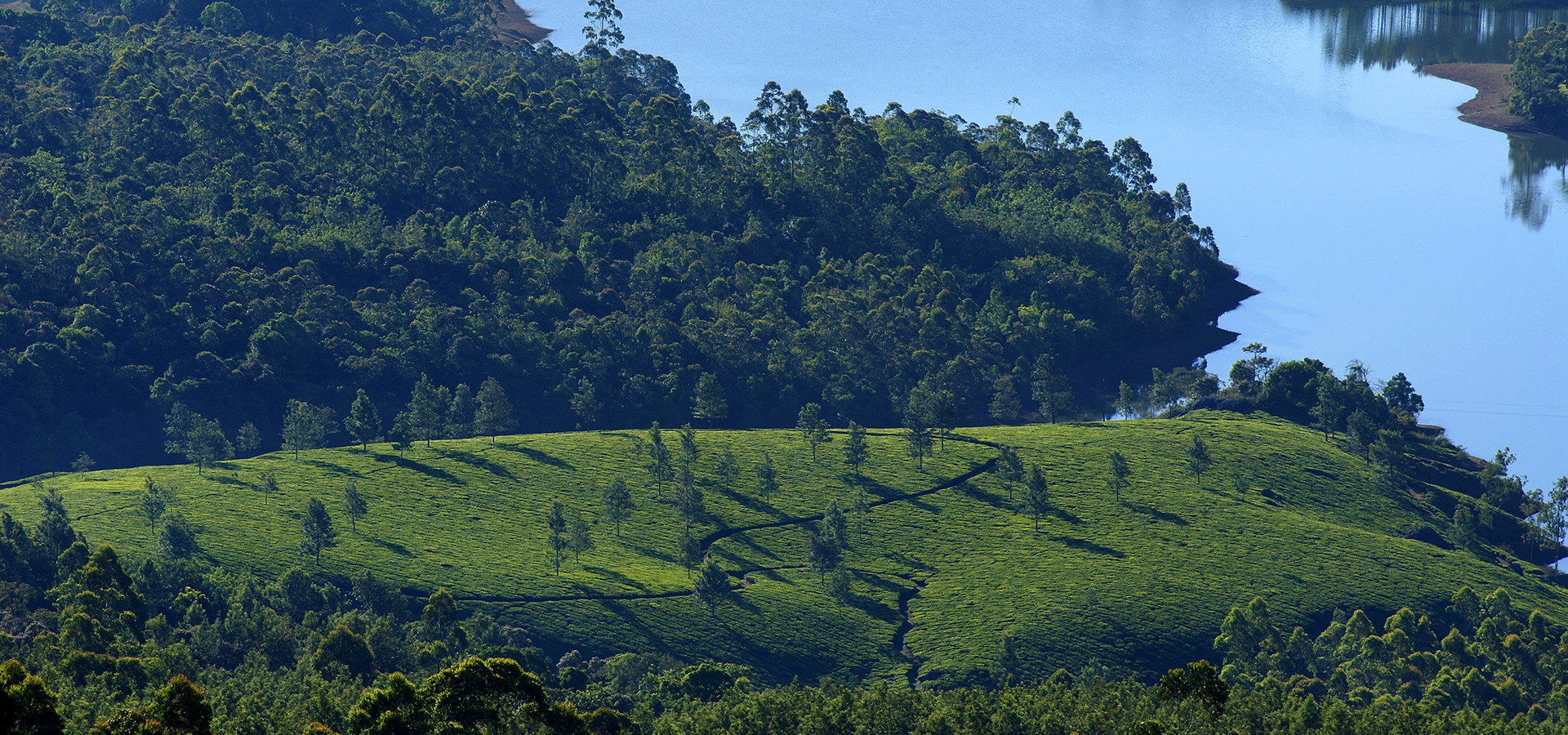 5 day itinerary to Offbeat Munnar