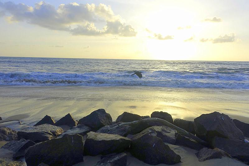 Beach Hopping Alleppey