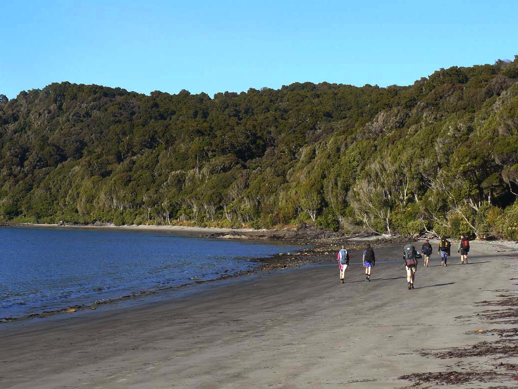 Stewart Island Walk New Zealand