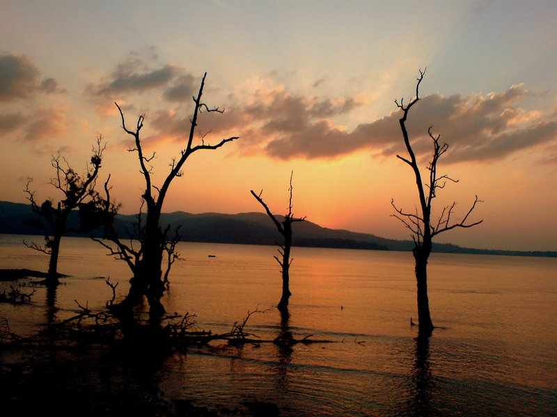 Chidiya Tapu Diving in Andamans