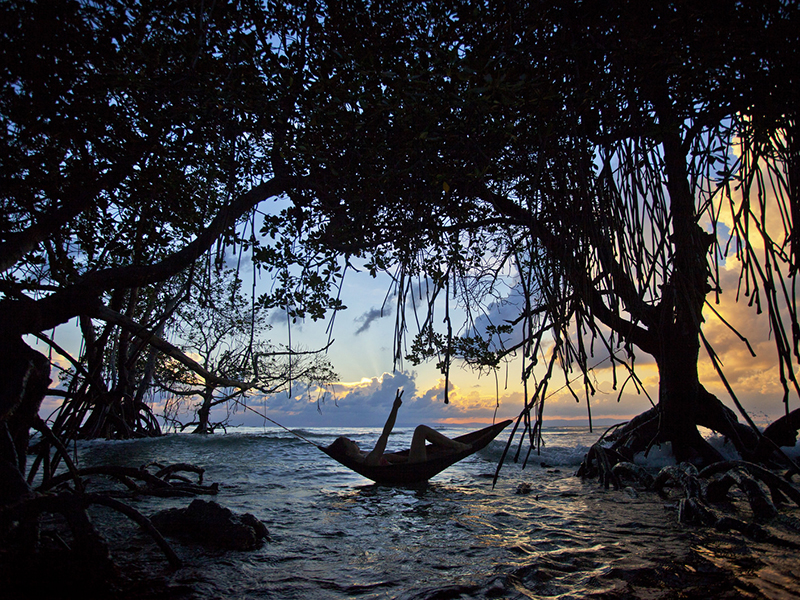 Things to Do in Andamans : The Bucket List