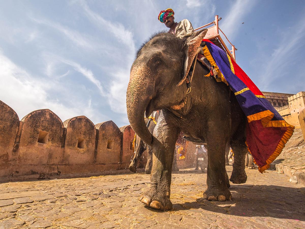 Jaipur Rajasthan Itinerary