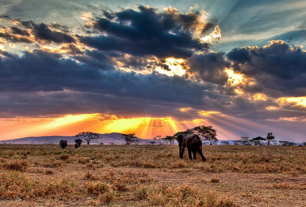 Tanzania – The Wilder Cousin of Kenya